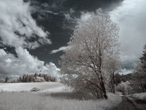 Infrared orava landscapes royalty free stock photography