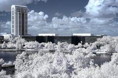 Infrared Orlando del centro fotografia stock