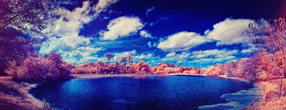 Infrared panorama of lake in park Stock Images