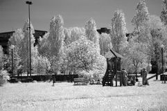 Infrared - park Obrazy Stock