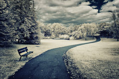 Infrared Park Landscape Royalty Free Stock Images