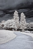 Infrared park Royalty Free Stock Photography