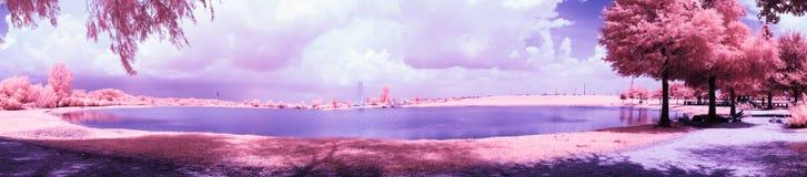 Infrared parkerar lekplatsen på ett soligt, sommardag arkivbilder
