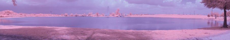Infrared parkerar sjön på ett soligt, sommardag royaltyfria bilder
