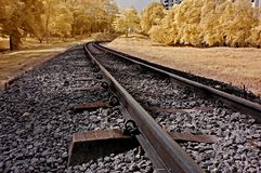 Infrared photo � railway, landscape, and tree Royalty Free Stock Photos