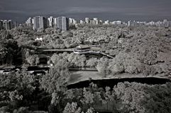 Infrared photo – tree, landscapes and apartment Royalty Free Stock Photos