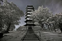 Infrared photo – tree, landscapes and pagoda. In the parks Royalty Free Stock Image