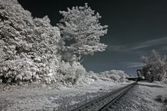Infrared photo – tree and railway track Stock Photo