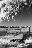 Infrared photo of dock and water Royalty Free Stock Images