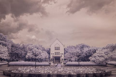 Infrared photo Museum building and pond lotus in Public park, Royalty Free Stock Image