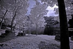 Infrared photo- tree,rock,girl Royalty Free Stock Photography