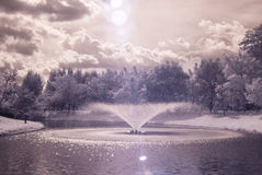 Infrared photo Trees and grass in Public park with pond Royalty Free Stock Image