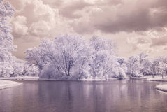Infrared photo Trees and grass in Public park with pond Royalty Free Stock Images