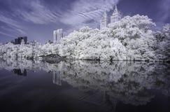 Central Park Infrared stock photos