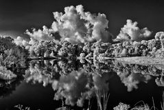 Infrared photograph of pond in Flora Stock Photography