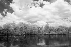 Infrared photography black and white, Vachirabenjatas Park, land mark of Bangkok, Thailand. `Vachirabenjatas Park` also know as `Rot Fai Park` is one of the Stock Image