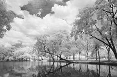 Infrared photography black and white, Vachirabenjatas Park, land mark of Bangkok, Thailand. `Vachirabenjatas Park` also know as `Rot Fai Park` is one of the Royalty Free Stock Image