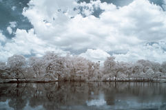 Infrared photography, color, Vachirabenjatas Park, land mark of Bangkok, Thailand. `Vachirabenjatas Park` also know as `Rot Fai Park` is one of the most Royalty Free Stock Photo