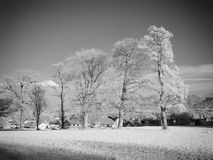 Infrared photography landscape Royalty Free Stock Image
