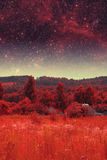 Infrared Photography Stock Photography