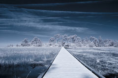 Infrared shot of path over water Royalty Free Stock Photography