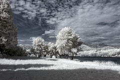 Infrared river bank Royalty Free Stock Photography