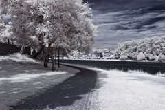 Infrared river bank Royalty Free Stock Photos