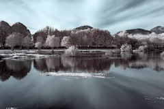 Infrared river landscape Stock Photos