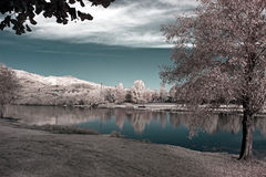 Infrared river landscape Stock Photo