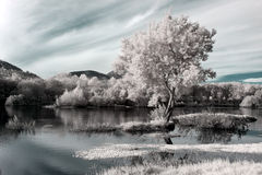 Infrared river landscape Royalty Free Stock Image