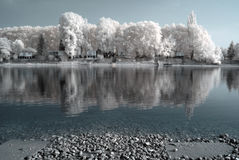 Infrared river shore Stock Images