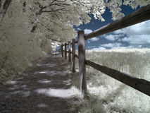 Infrared track. Photo was made with an infrared-filter Stock Images