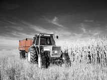 Infrared tractor Royalty Free Stock Photo