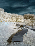 Infrared view at challenge park Royalty Free Stock Photography