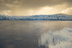 Infrared view at lake`s surface royalty free stock images