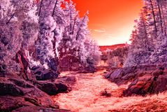 Infrared Water Rapids Stock Photography