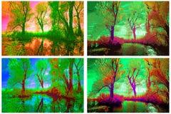 Infrarode bomen Stock Fotografie