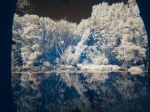 Infrarode mening bij de alluviale gebieden van Donau in Slowakije Stock Afbeeldingen