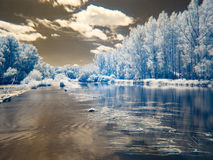Infrarode mening bij de alluviale gebieden van Donau in Slowakije Stock Afbeelding