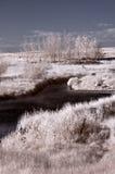 Infrarode rivier Stock Foto's