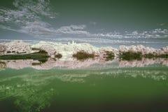 Infrarood landschap in de Zomerzonsondergang over meer Stock Foto's