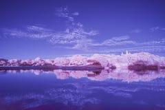 Infrarood landschap in de Zomerzonsondergang over meer Royalty-vrije Stock Afbeeldingen