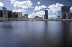 Infrarot im Stadtzentrum gelegenes Orlando Lizenzfreies Stockfoto