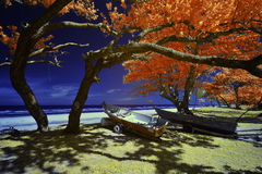 Infrarot redigierte Bild des Fischerbootes und -bäume in dem Fluss b Lizenzfreie Stockfotos