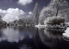 Infrarouge de lac photos stock