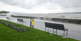 Infuri sulla riva del lago, Ginevra, Svizzera Fotografia Stock
