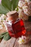 Infusão da castanha das flores em um close up do vertical da garrafa Fotografia de Stock Royalty Free