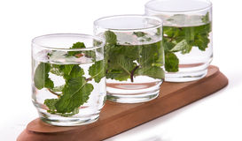 Infused fresh fruit water of mint leaf. isolated over white Royalty Free Stock Photo