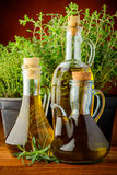 Infused oil and fresh green herbs Royalty Free Stock Image