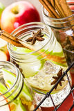 Infused water Royalty Free Stock Photos